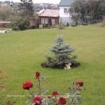 Хабарова 2